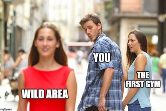 pokemon meme wild area